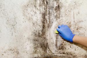 Flecken von der Wand entfernen
