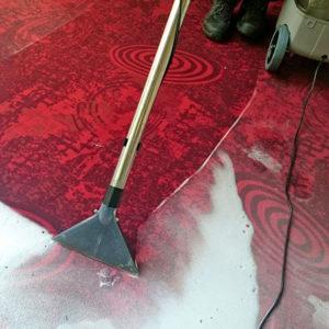 Die Teppichreinigung